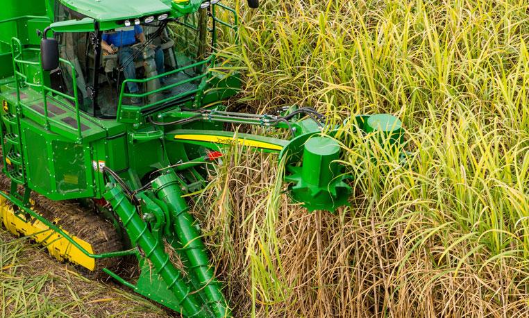 Sugar Harvesting | Cane Harvesting | John Deere US