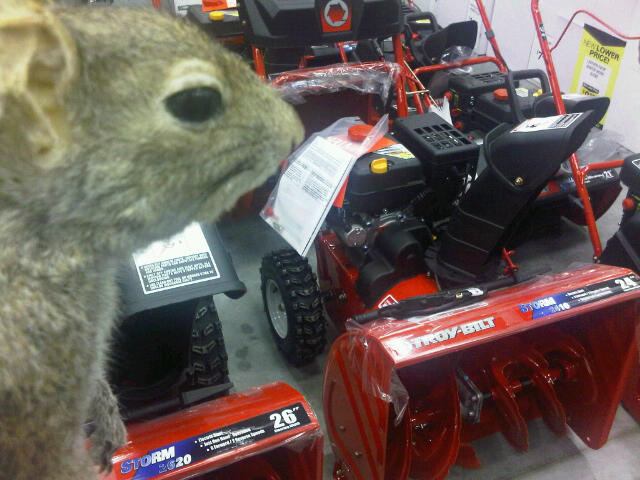 blower won't engage on the 430??? - MyTractorForum.com ...
