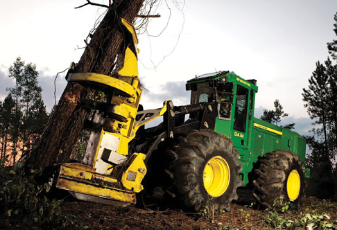 843K Wheeled Feller Buncher grasping a bunch of trees at a job site at ...